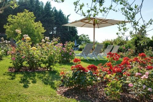 Villa Le Barone - Garden