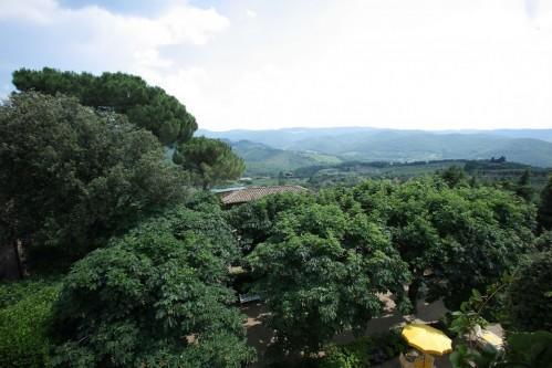 Villa Le Barone - Umgebung